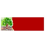 представителен сайт баоо
